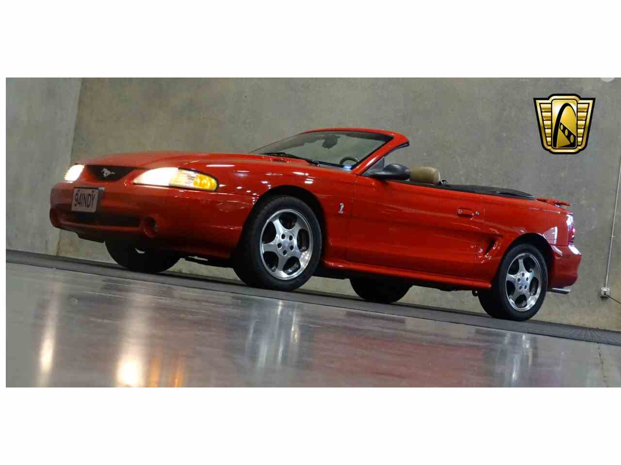 Large Picture of '94 Mustang - KDR9