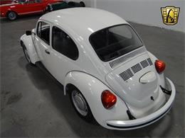 Picture of '76 Beetle - KKMK
