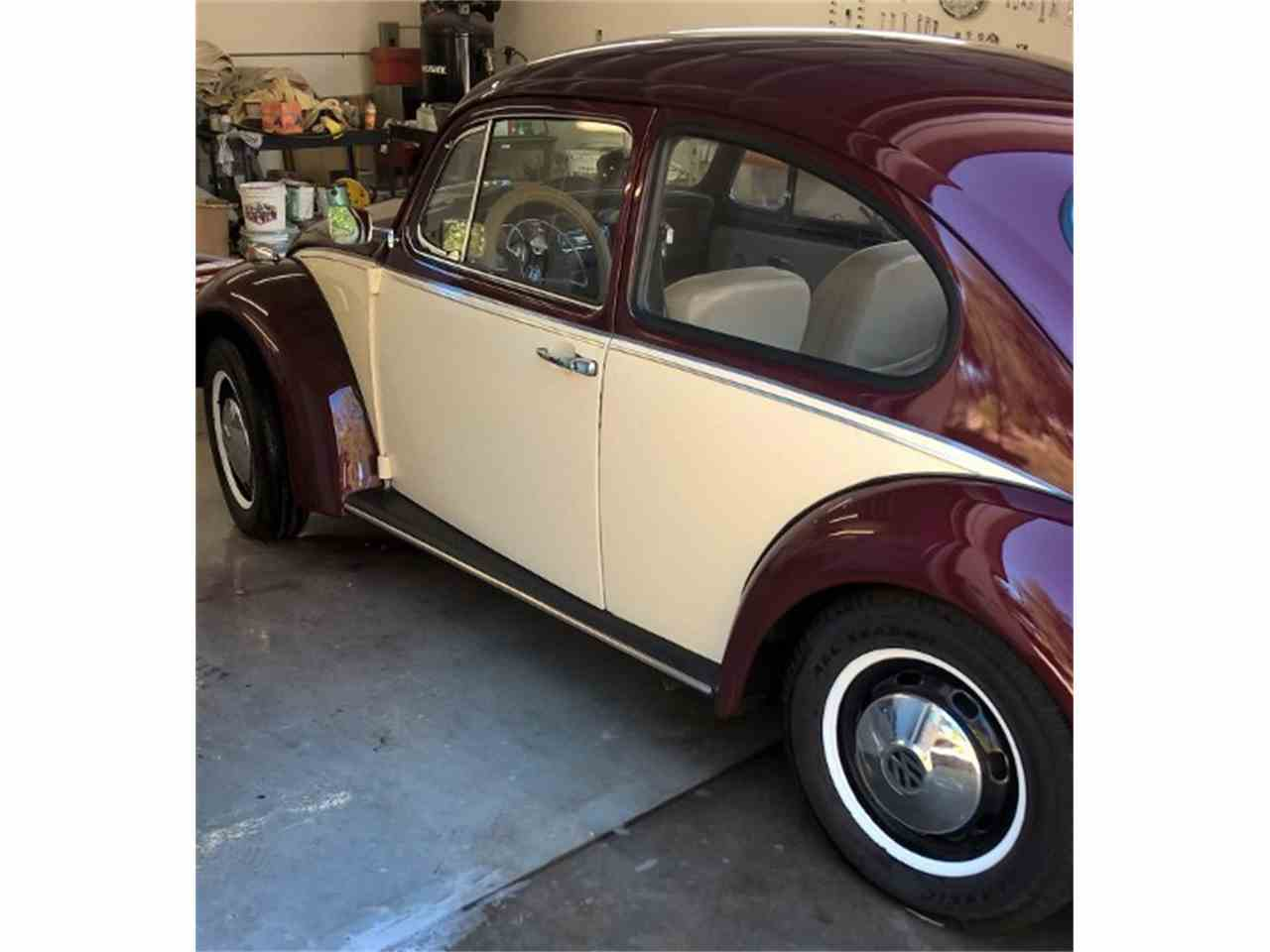 Large Picture of '68 Beetle - KKR1
