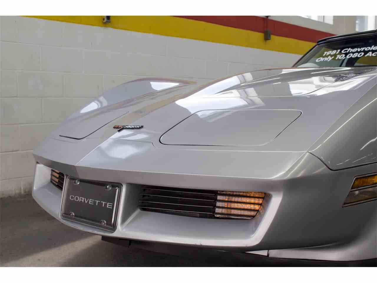 Large Picture of '81 Corvette Offered by John Scotti Classic Cars - KKXV