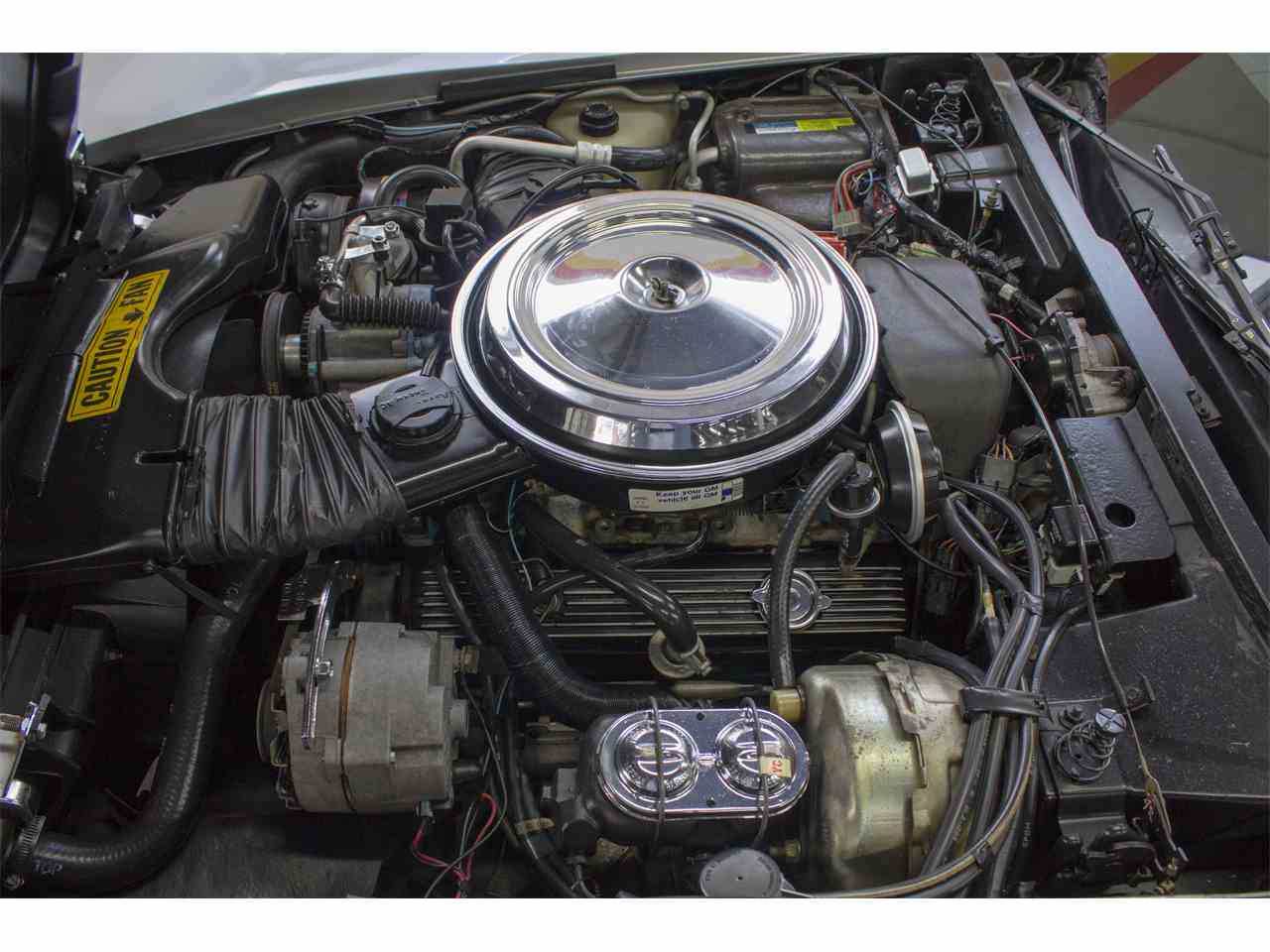 Large Picture of 1981 Chevrolet Corvette - $26,900.00 Offered by John Scotti Classic Cars - KKXV