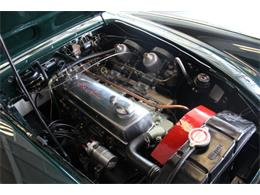 Picture of 1961 Austin-Healey 3000 Mk I BT7 - $66,950.00 Offered by Fraser Dante - KPWR