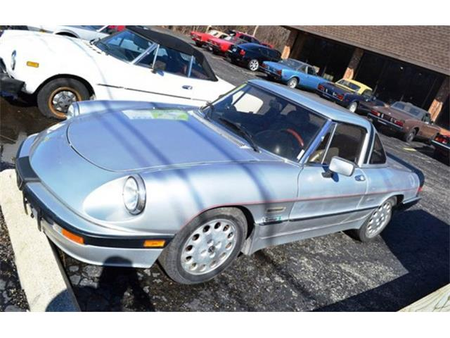 Picture of 1987 Alfa Romeo Quadrifoglio - $13,995.00 Offered by  - KTP4