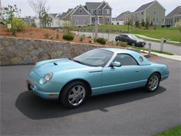 Picture of '02 Thunderbird - KYLI
