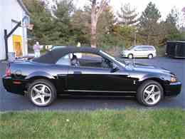 Picture of '03 Mustang - L1I6