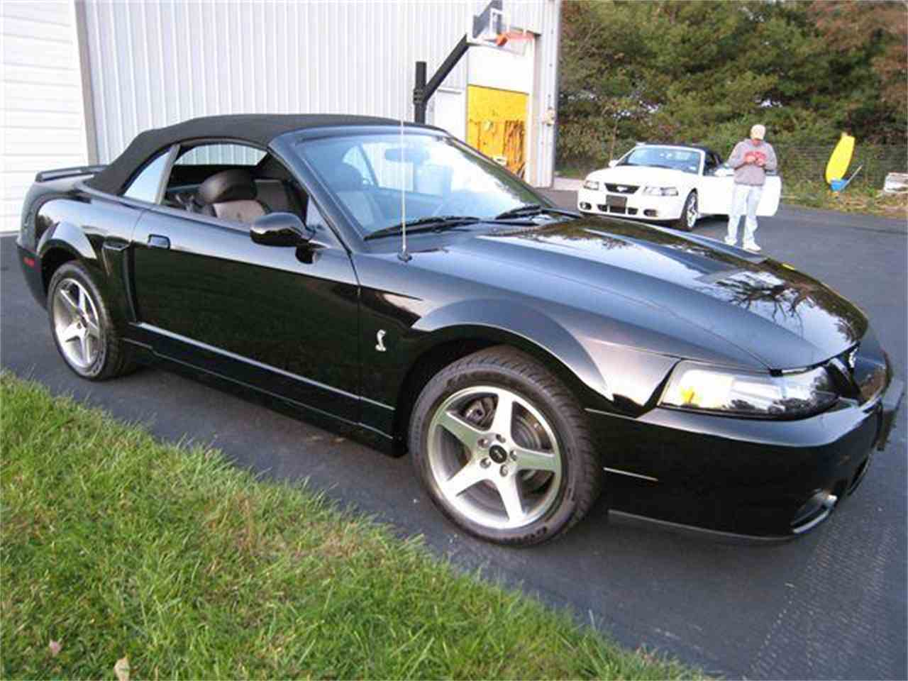 Large Picture of '03 Mustang - L1I6