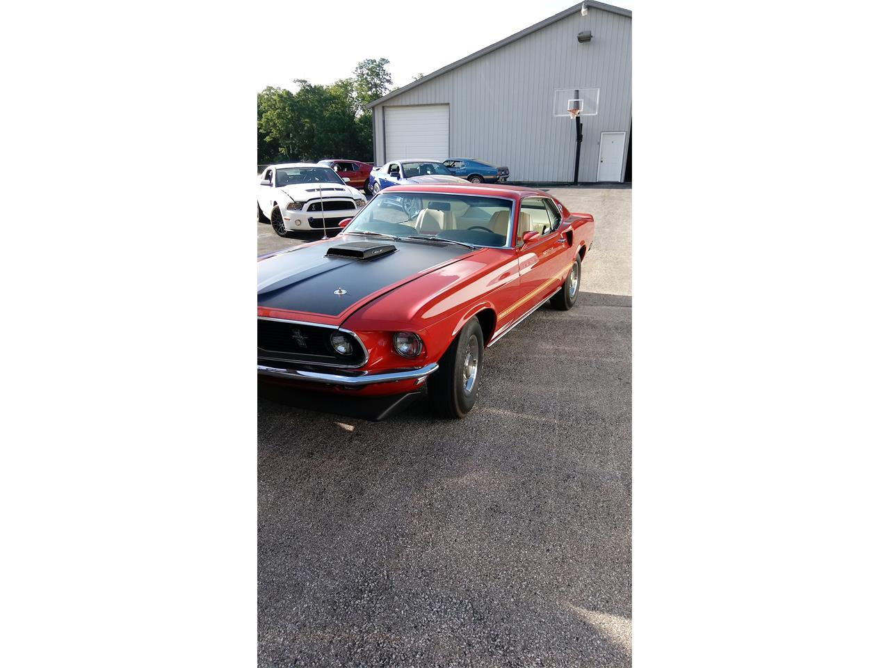 Large Picture of Classic 1969 Ford Mustang - L1IN