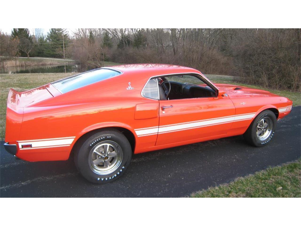 Large Picture of '69 Mustang - L1IO