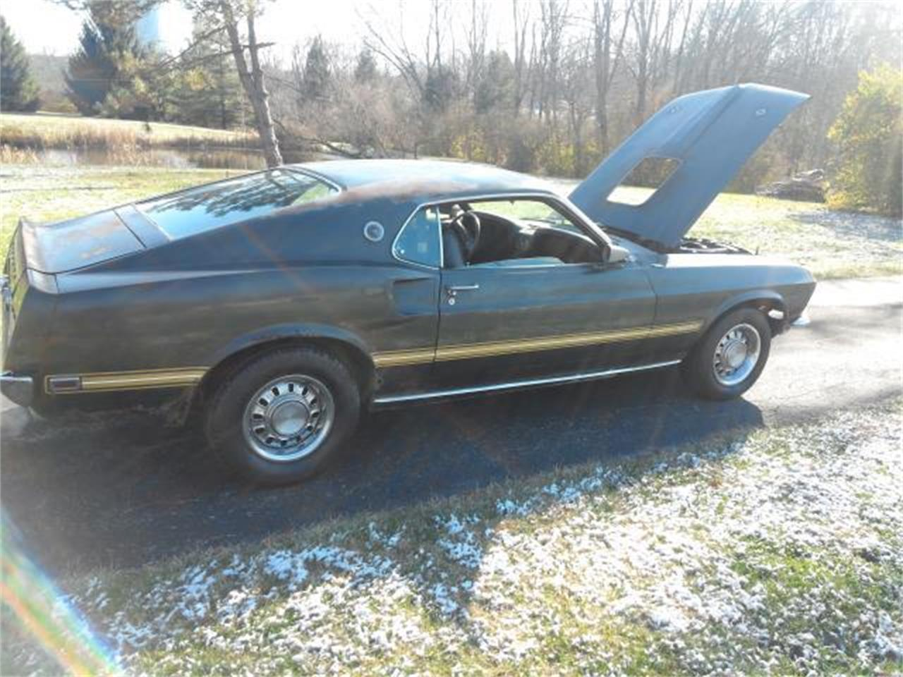 Large Picture of '69 Mustang - L1IQ