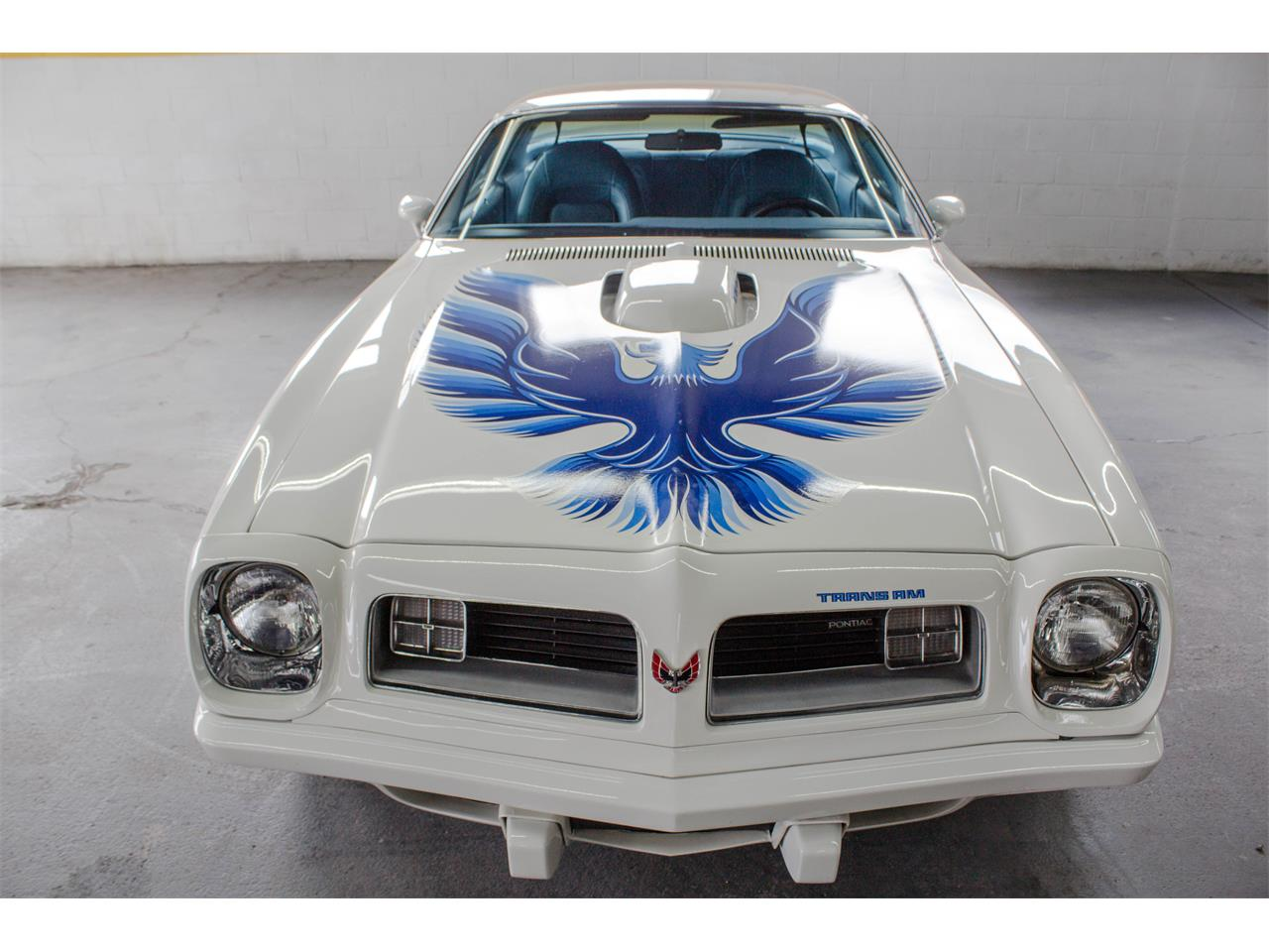 Large Picture of '75 Firebird Trans Am - L1U5