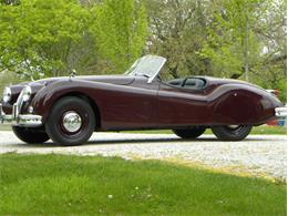 Picture of Classic '55 Jaguar XK-140 Sport Roadster located in Volo Illinois - $129,000.00 Offered by Volo Auto Museum - L2YC