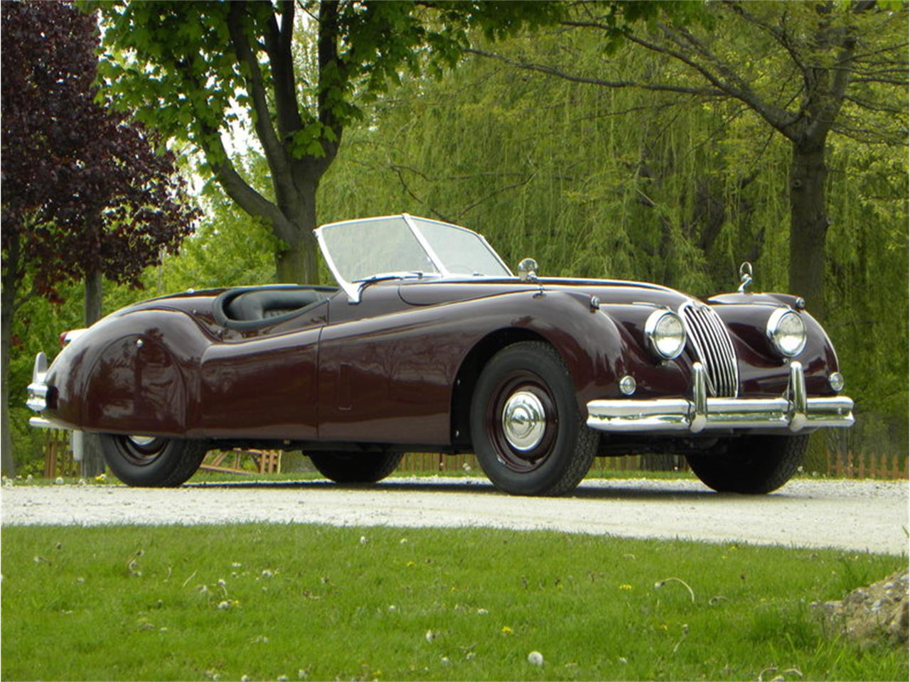 Large Picture of Classic '55 Jaguar XK-140 Sport Roadster Offered by Volo Auto Museum - L2YC