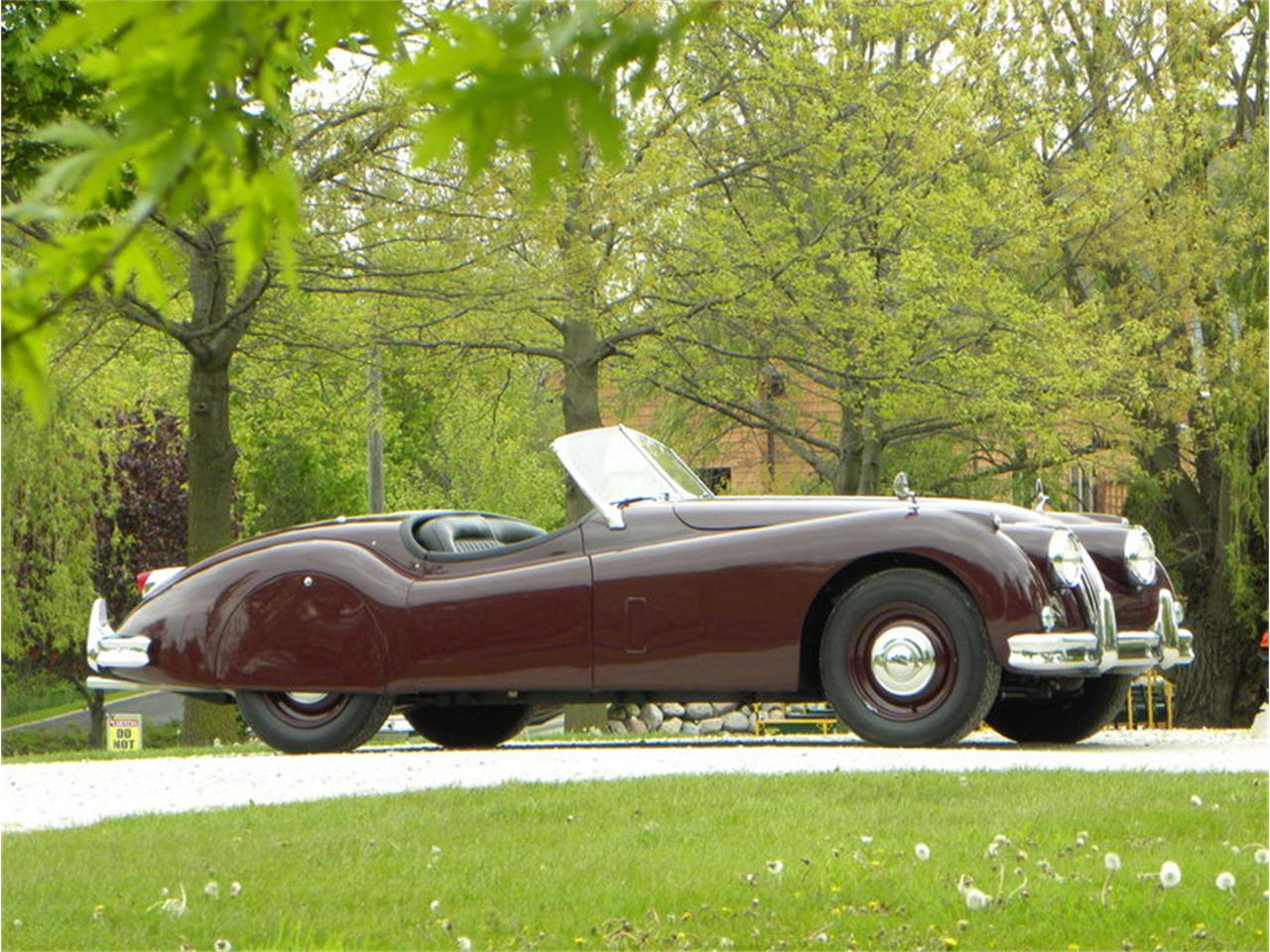 Large Picture of 1955 XK-140 Sport Roadster located in Volo Illinois Offered by Volo Auto Museum - L2YC