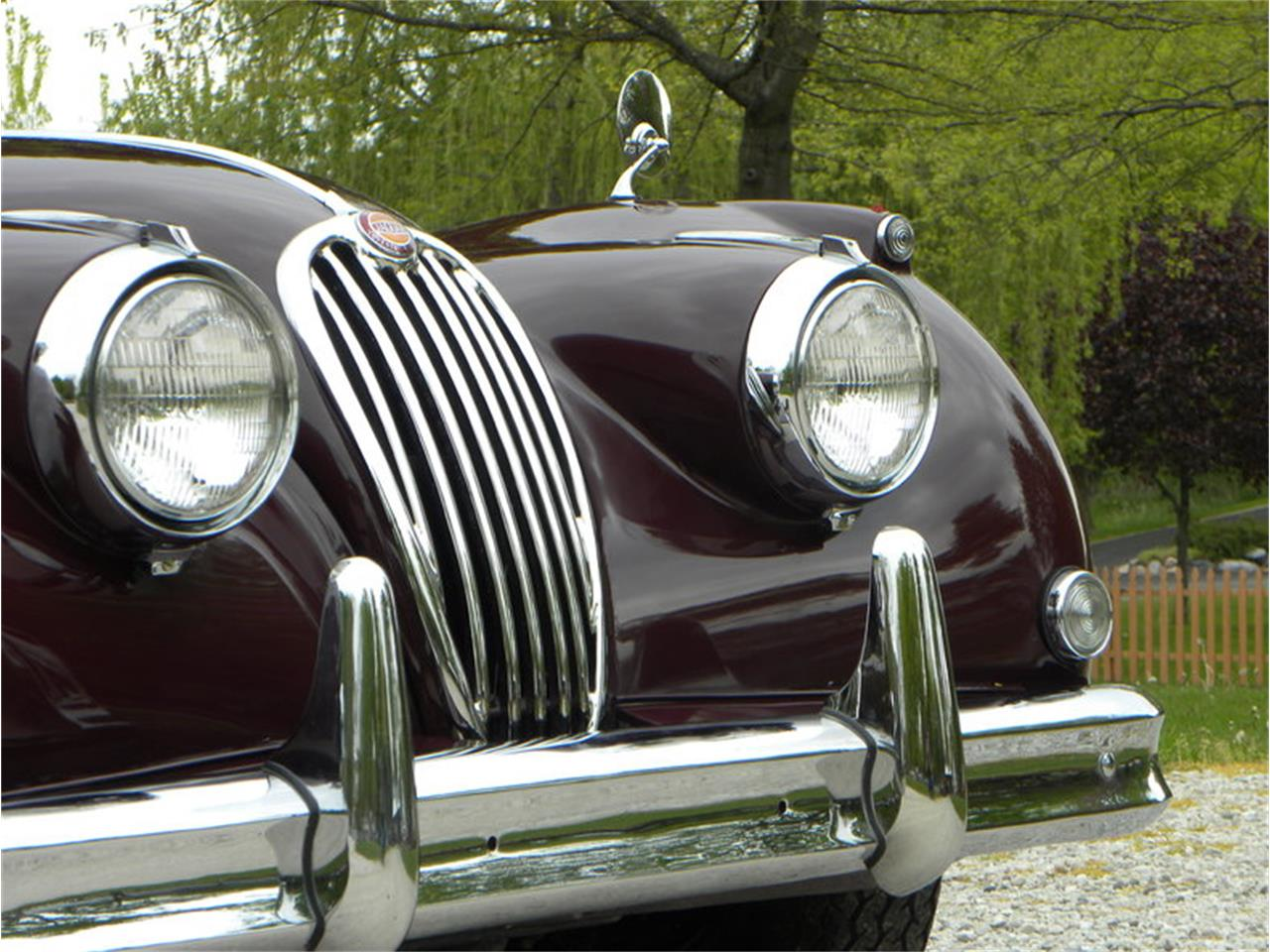 Large Picture of '55 Jaguar XK-140 Sport Roadster - $129,000.00 Offered by Volo Auto Museum - L2YC