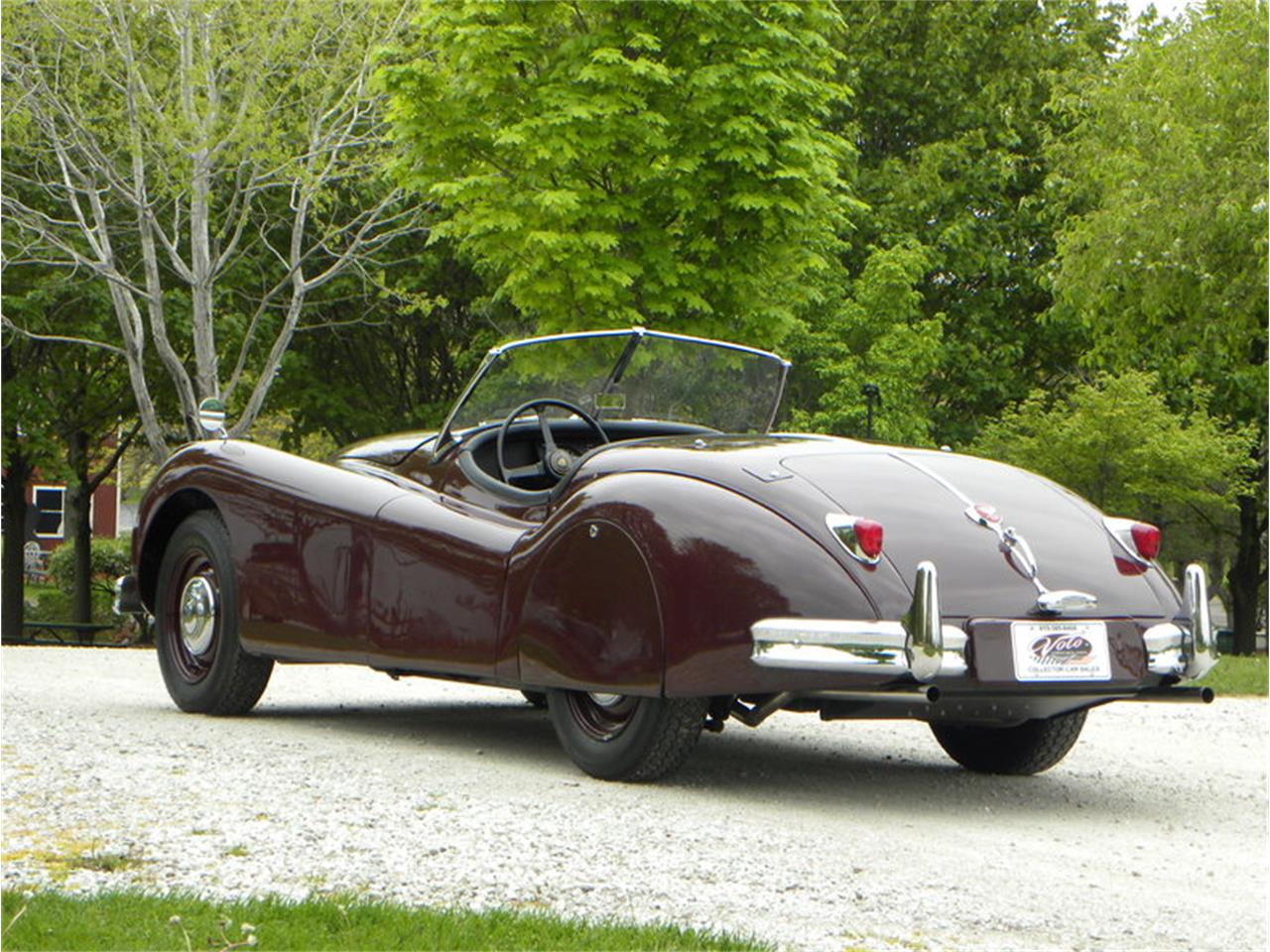 Large Picture of Classic 1955 Jaguar XK-140 Sport Roadster located in Volo Illinois Offered by Volo Auto Museum - L2YC