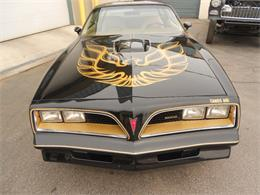 Picture of '77 Firebird Trans Am Offered by D & M Corvette Specialists LTD - L3SH