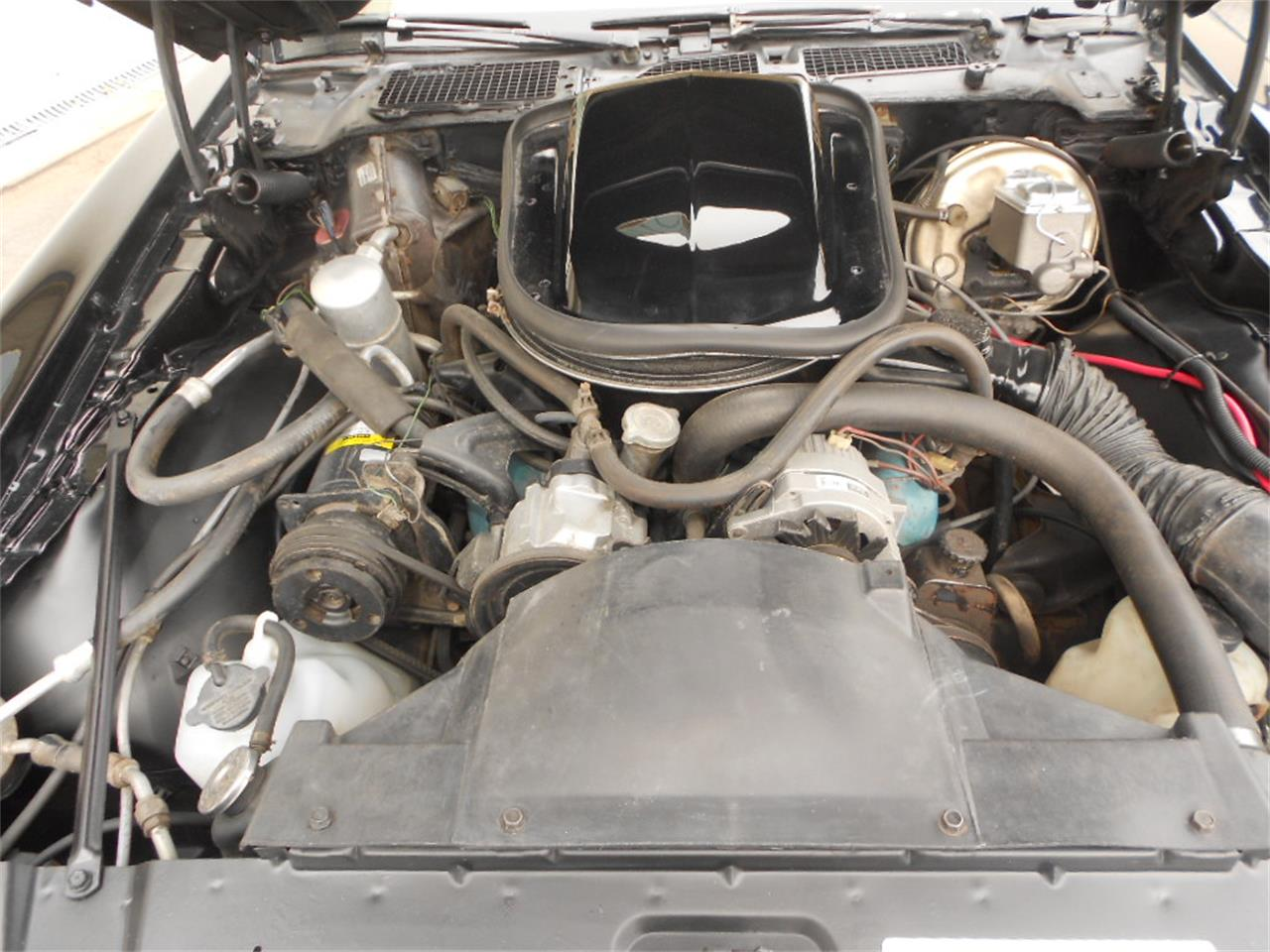 Large Picture of '77 Pontiac Firebird Trans Am - $42,955.00 Offered by D & M Corvette Specialists LTD - L3SH
