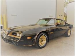 Picture of '77 Pontiac Firebird Trans Am located in Downers Grove  Illinois - L3SH