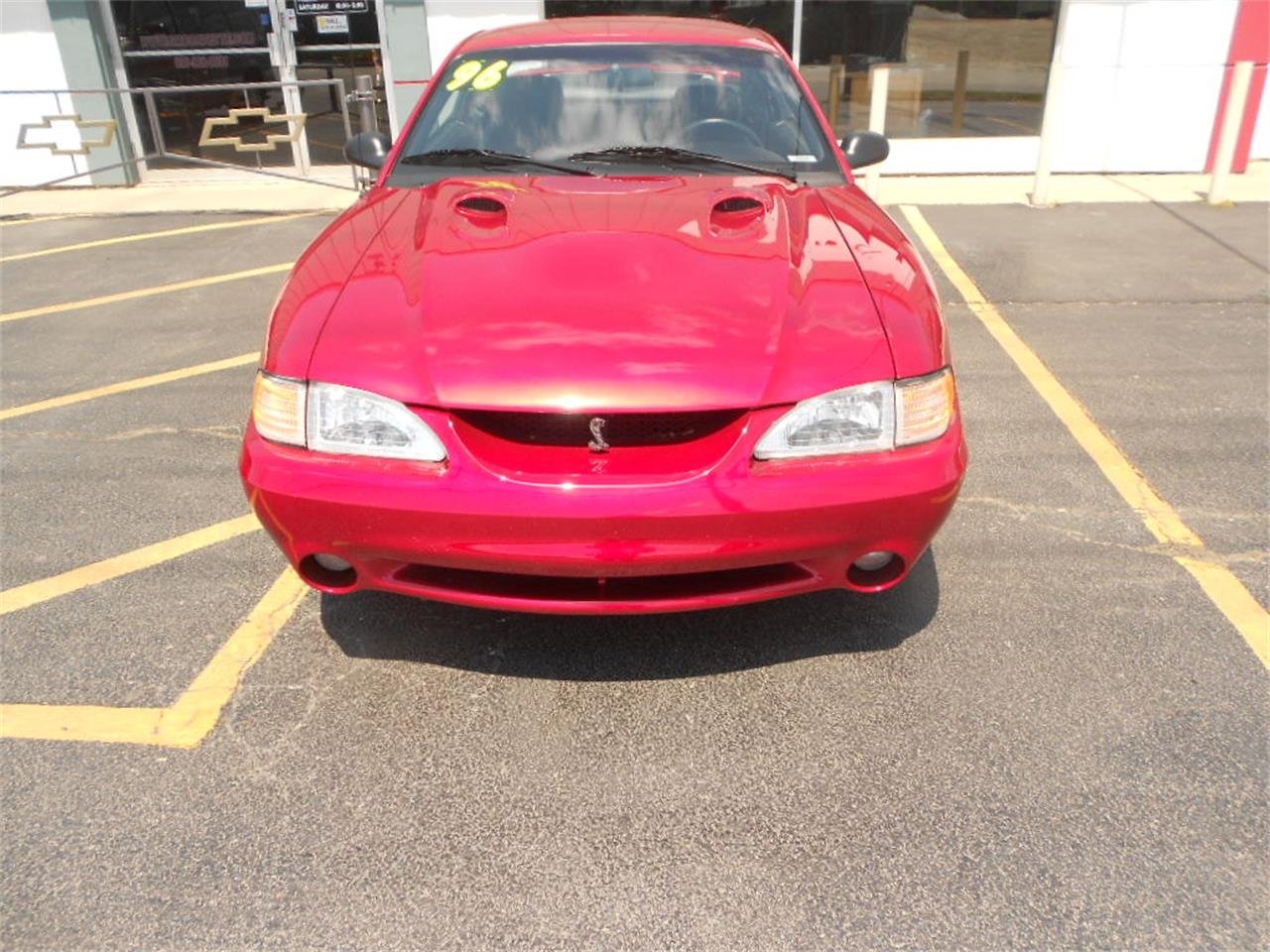 Large Picture of '96 Mustang Cobra - L3SQ