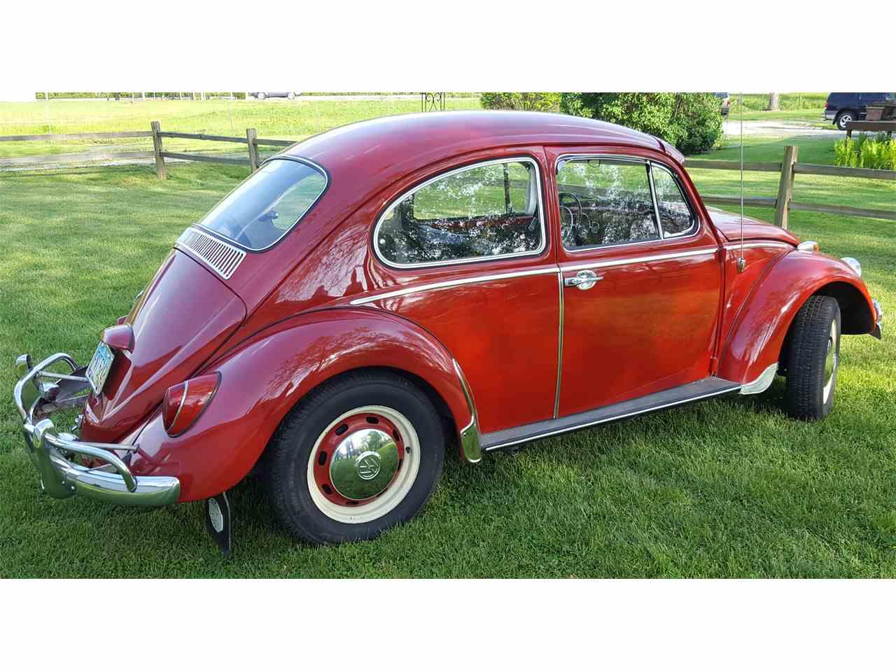 Large Picture of '66 Beetle - L0JA