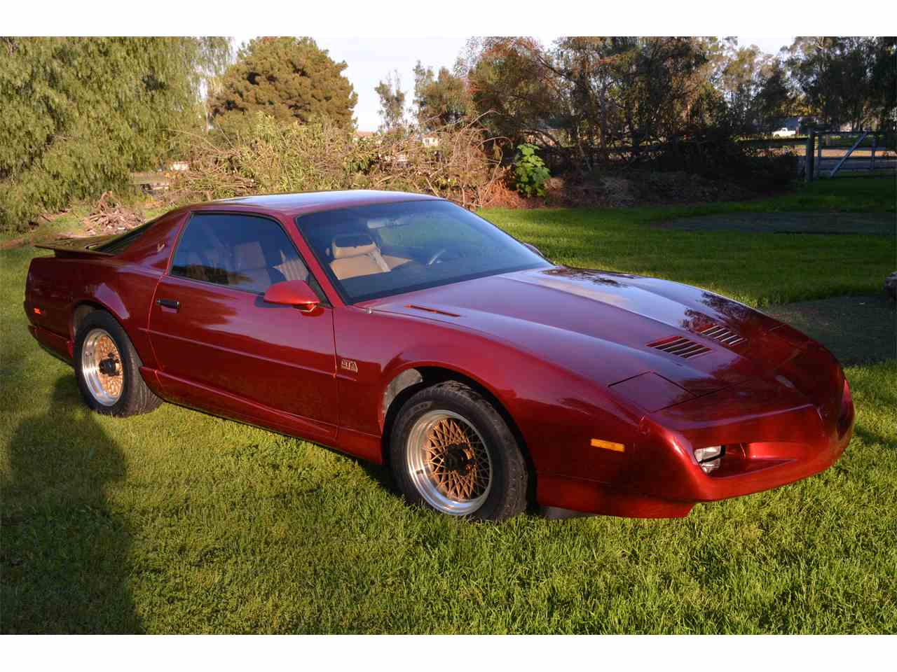 Large Picture of '91 Firebird Trans Am GTA - L497