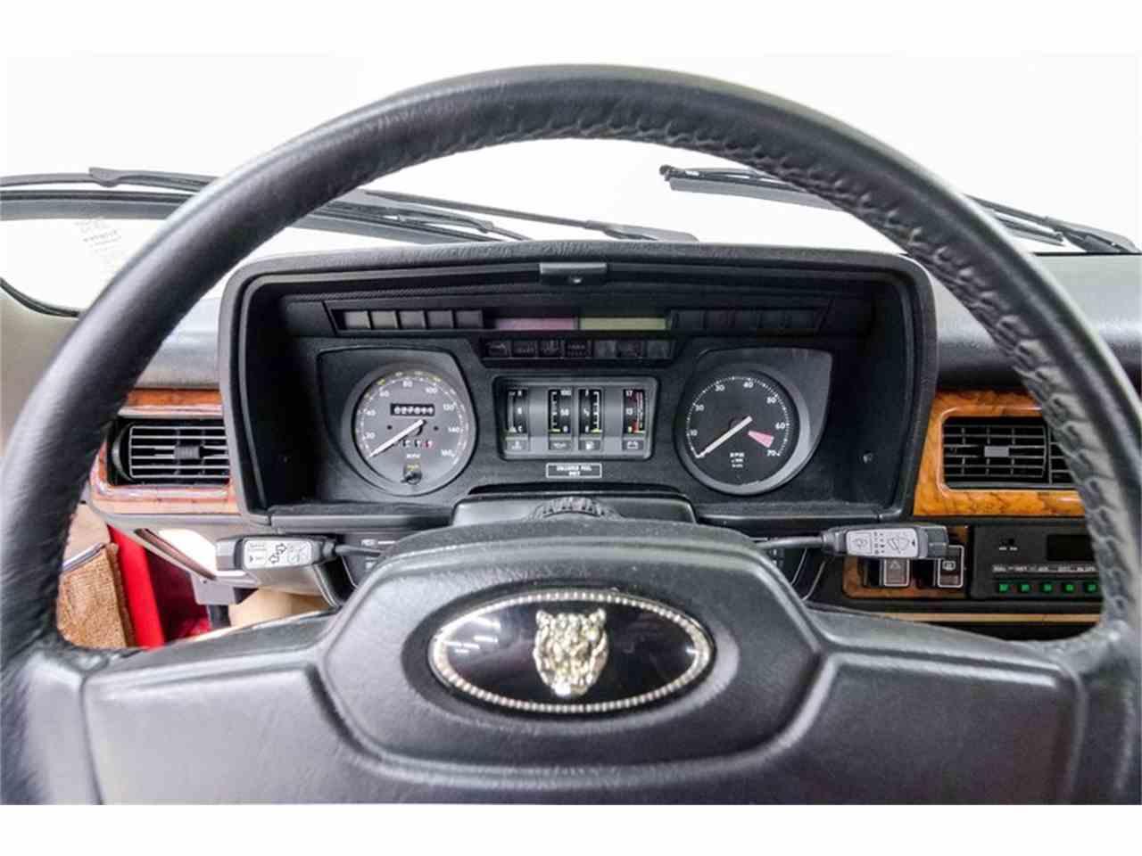 Large Picture of '86 XJS - L4QZ