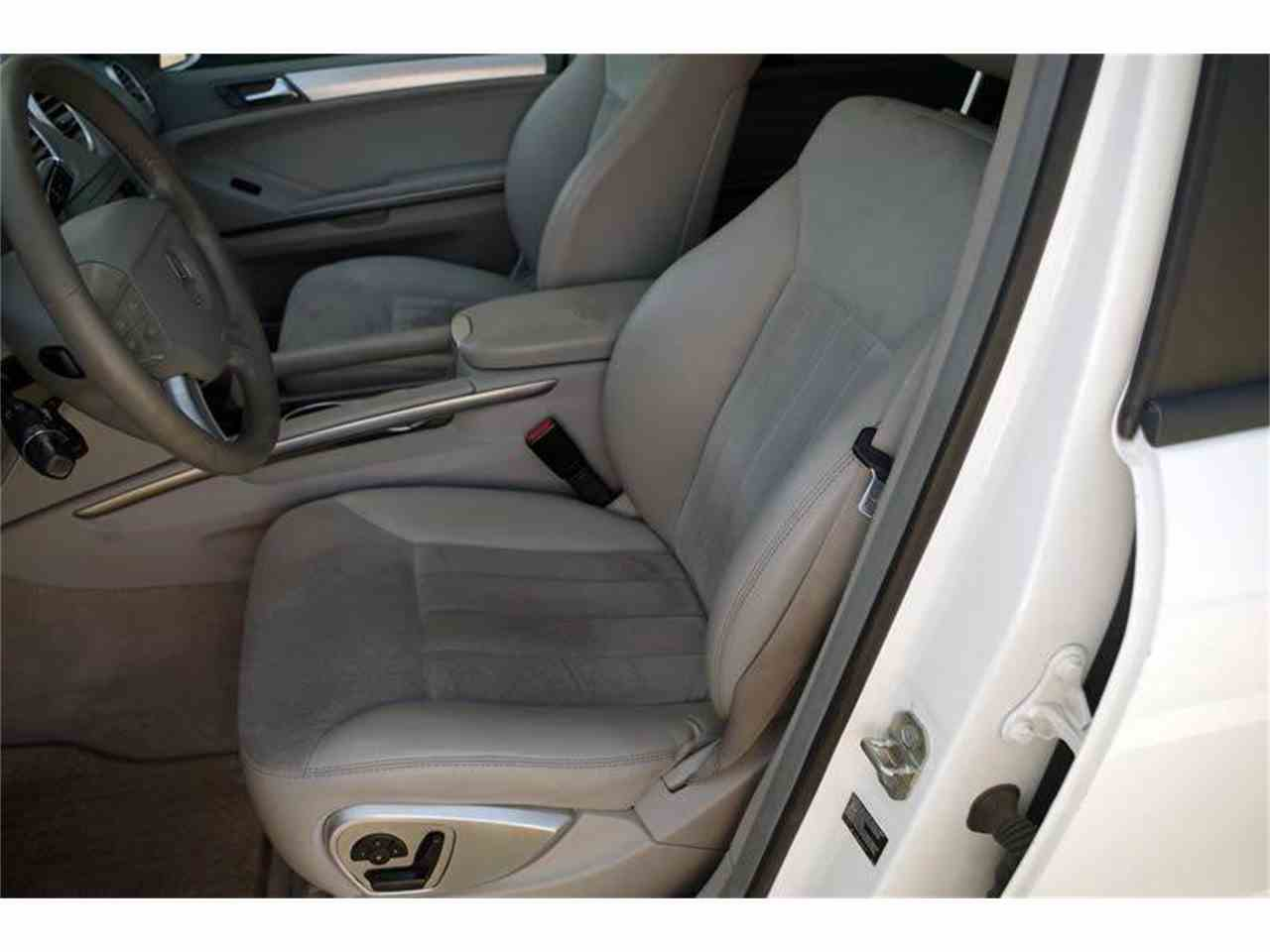 Large Picture of '06 M-Class - L50O