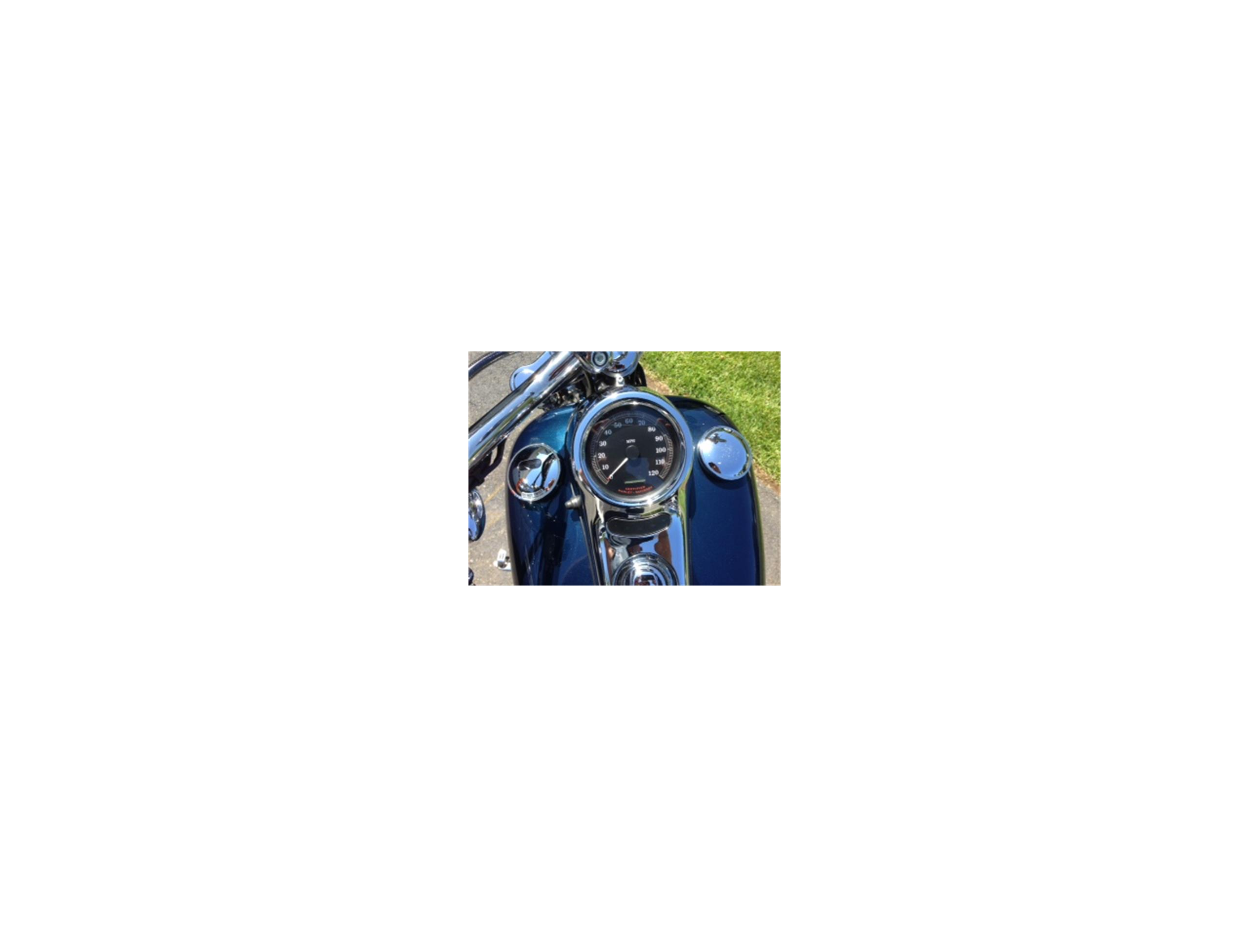 Large Picture of '01 Softail - L6J3