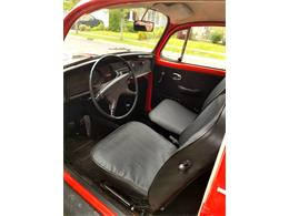 Picture of '72 Beetle - L6P9