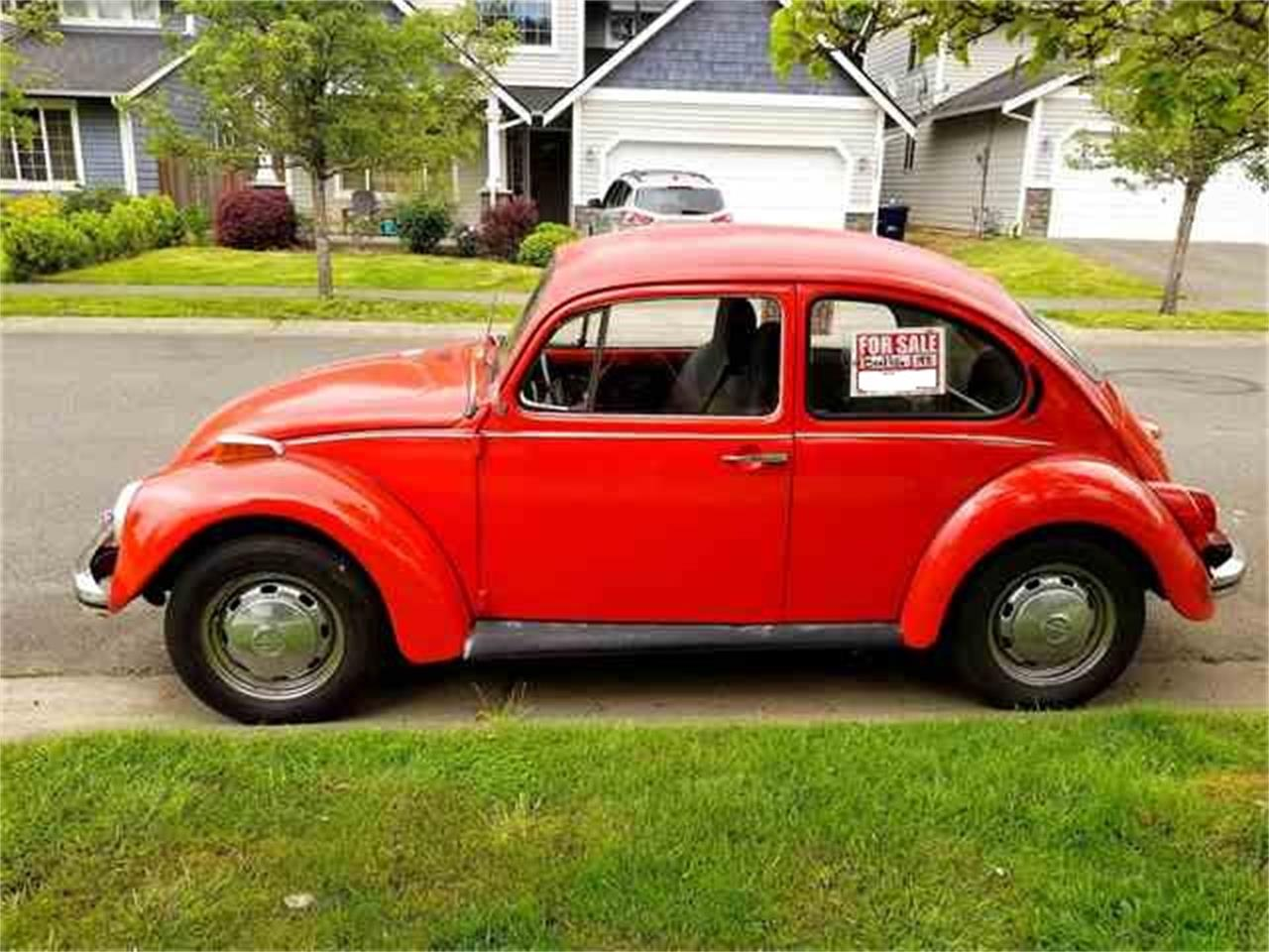 Large Picture of '72 Beetle - L6P9