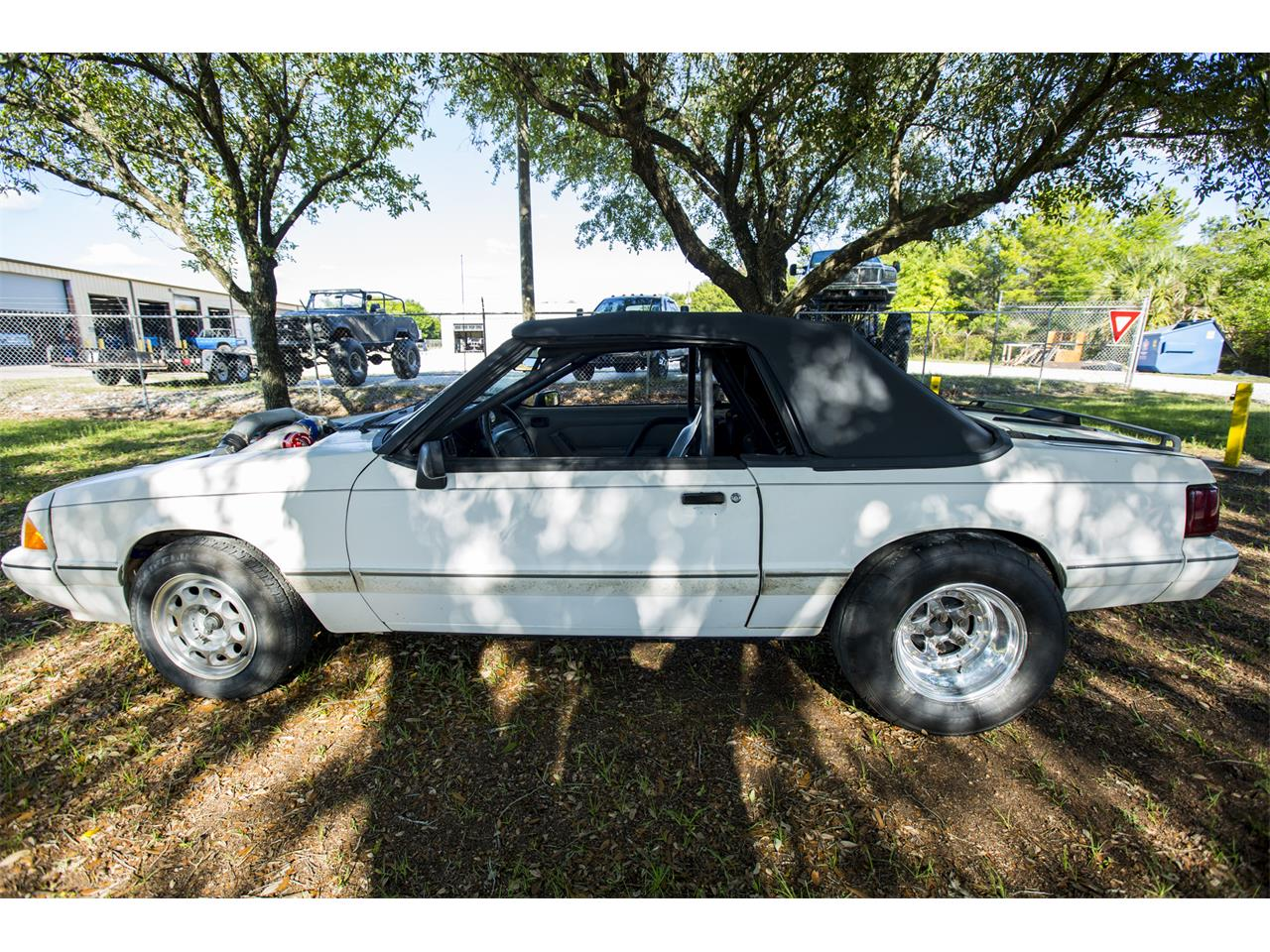 Large Picture of '88 Mustang - L6TM