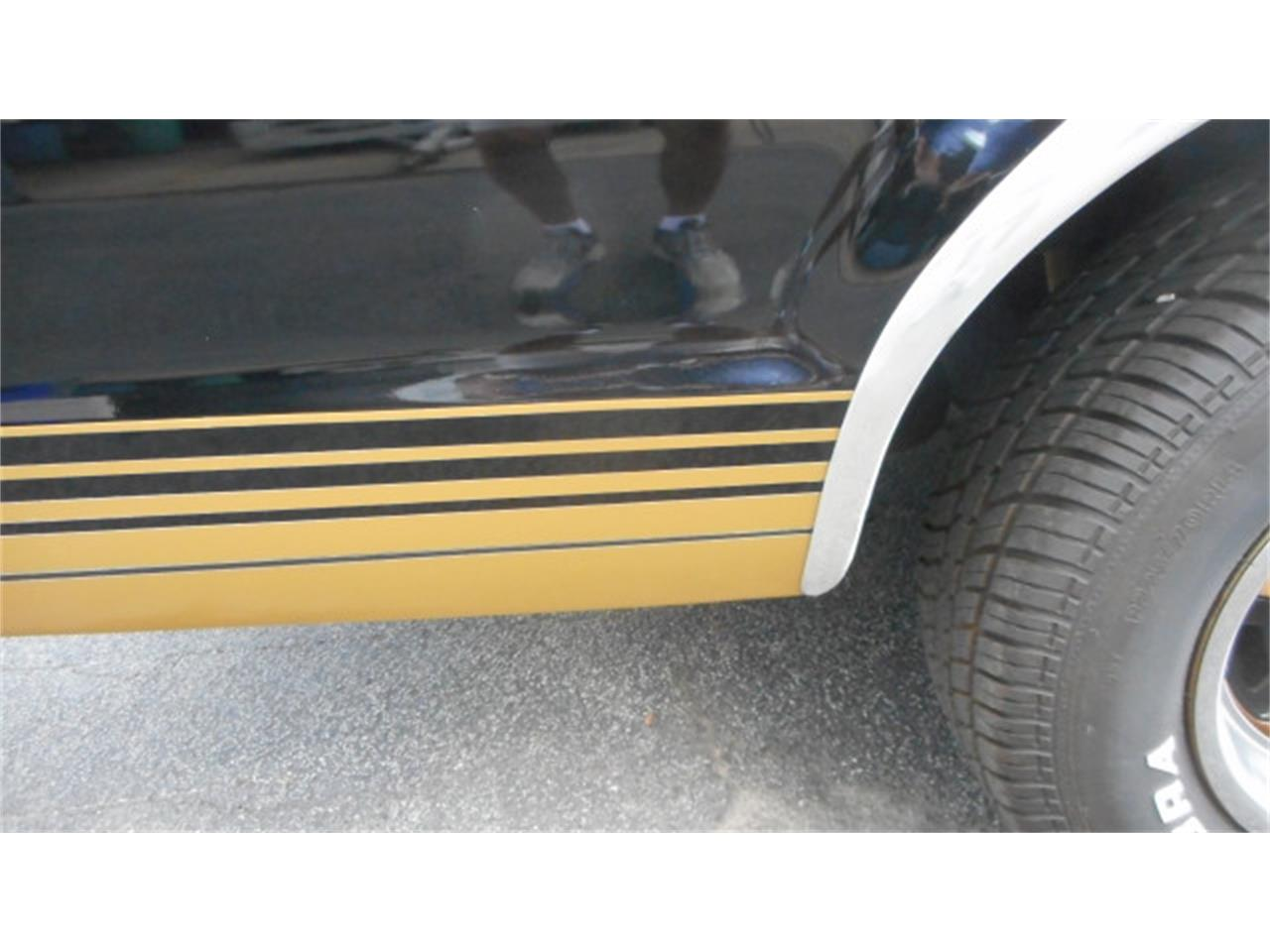 Large Picture of '78 Ranchero - L0UQ