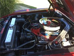 Picture of '69 Mustang Mach 1 located in N. Ft. Myers Florida Offered by a Private Seller - L7ME