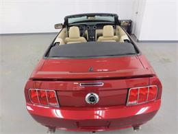 Picture of '07 Mustang - L7N1