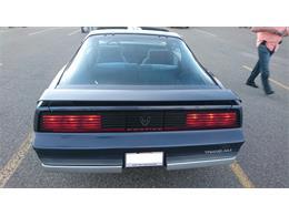 Picture of '84 Firebird - L9RJ