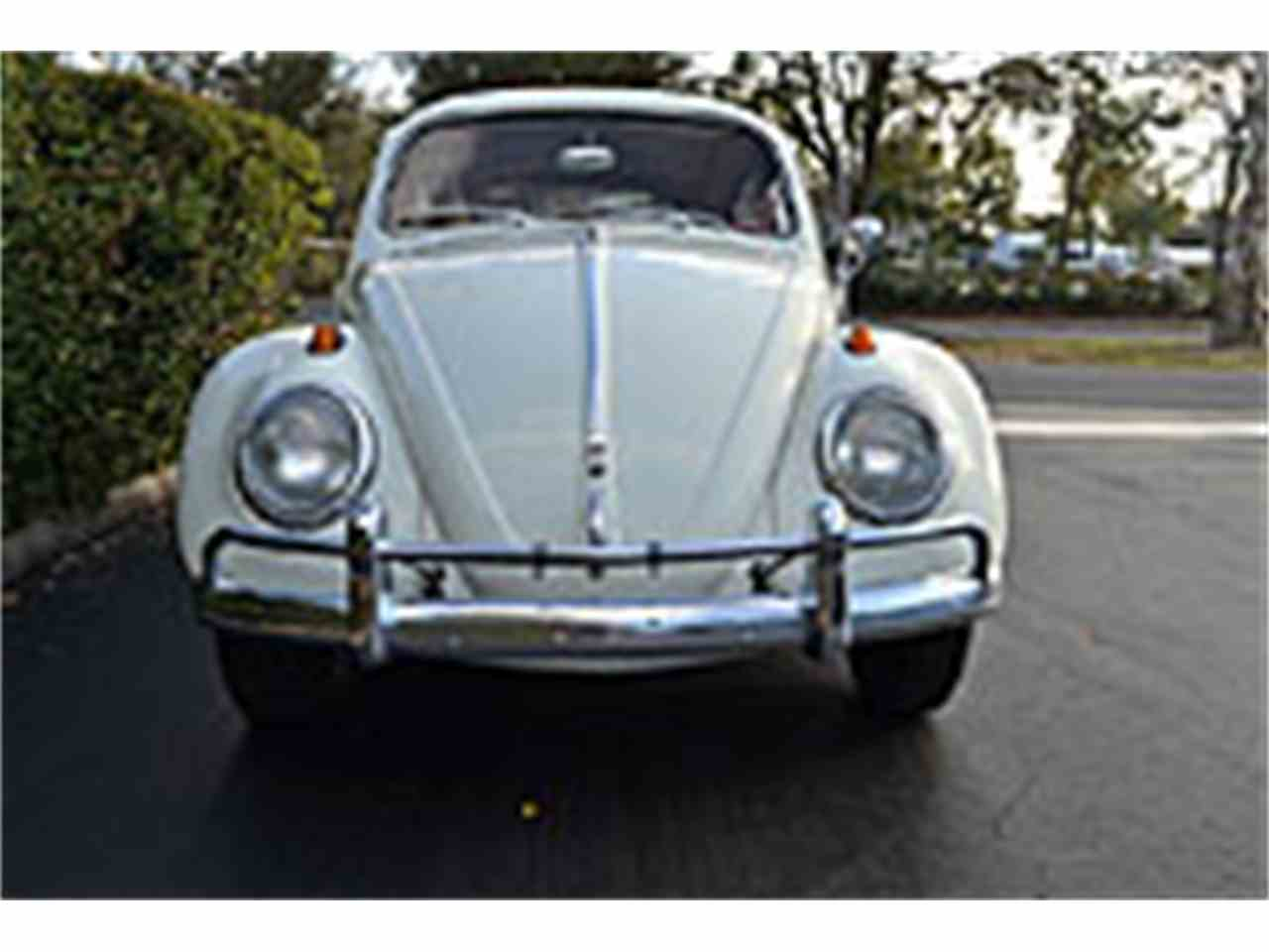 1963 Volkswagen Beetle for Sale | ClicCars.com | CC-990267