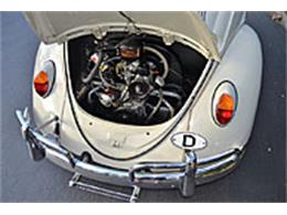 Picture of '63 Beetle - L83F