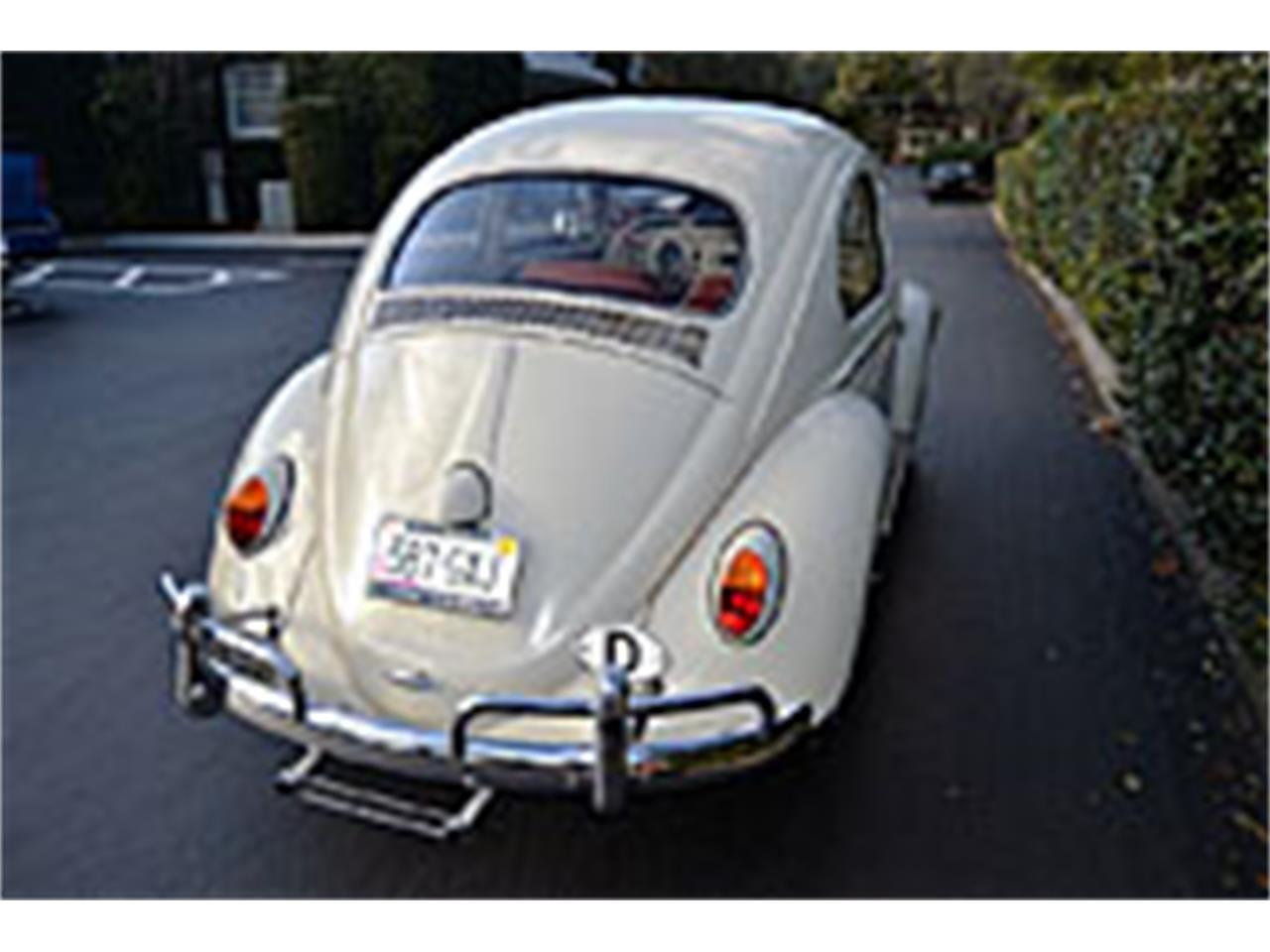 Large Picture of '63 Beetle - L83F