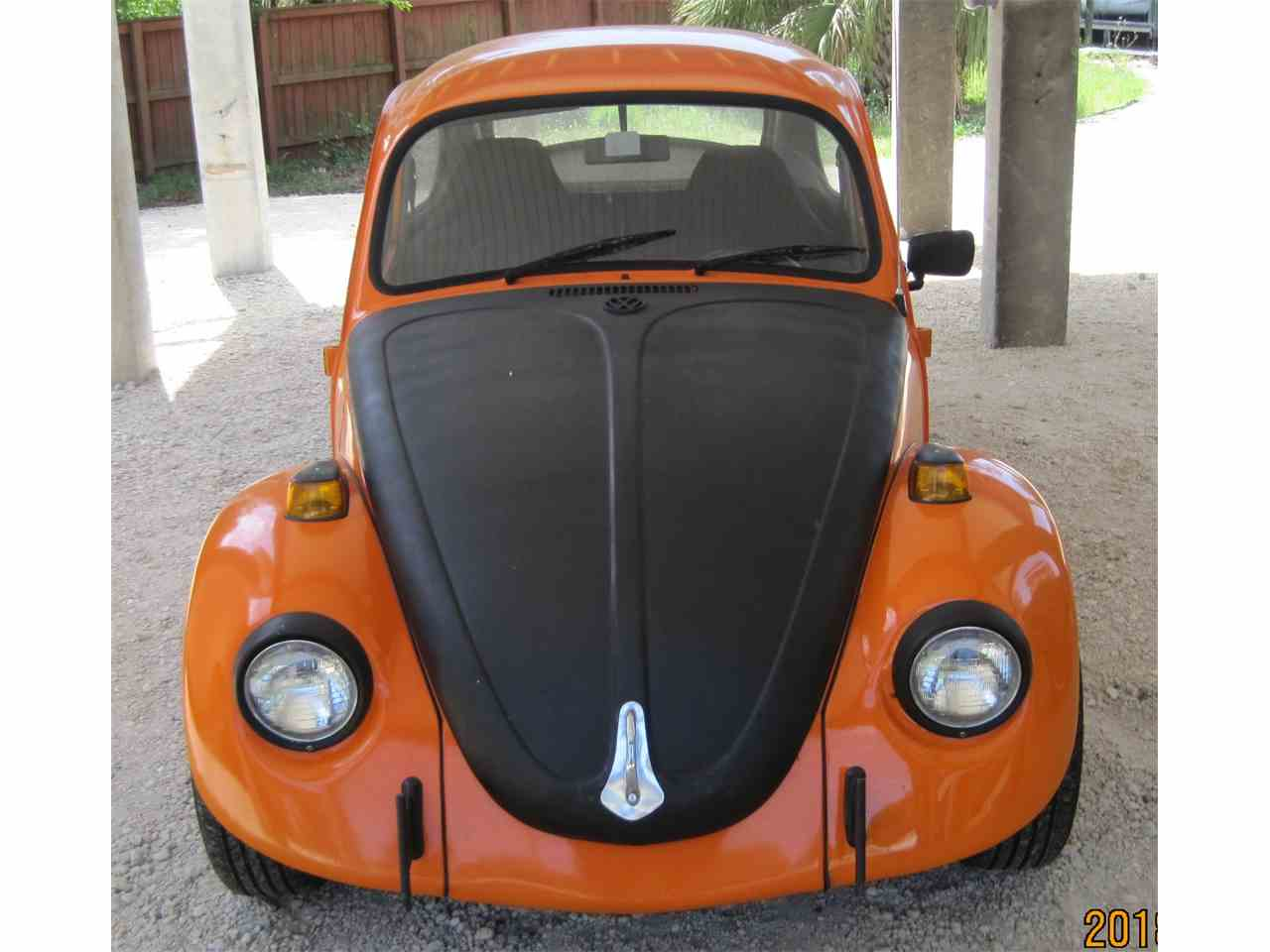 Large Picture of '71 Beetle - L7WU