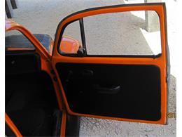 Picture of '71 Beetle - L7WU