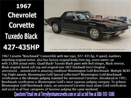 Picture of '67 Chevrolet Corvette Auction Vehicle Offered by Proteam Corvette Sales - LALX