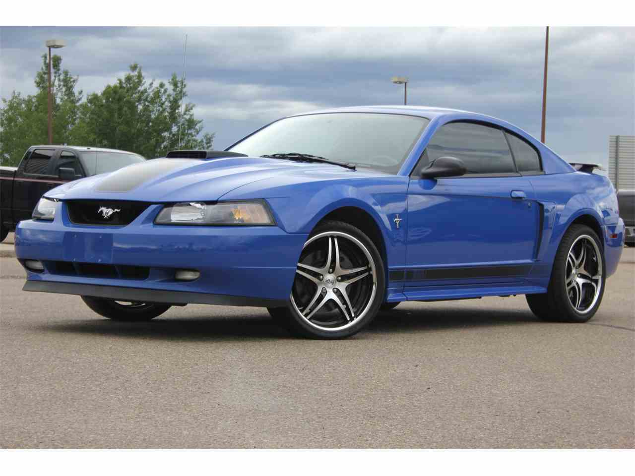 Large Picture of '03 Mustang Mach 1 - LAXP