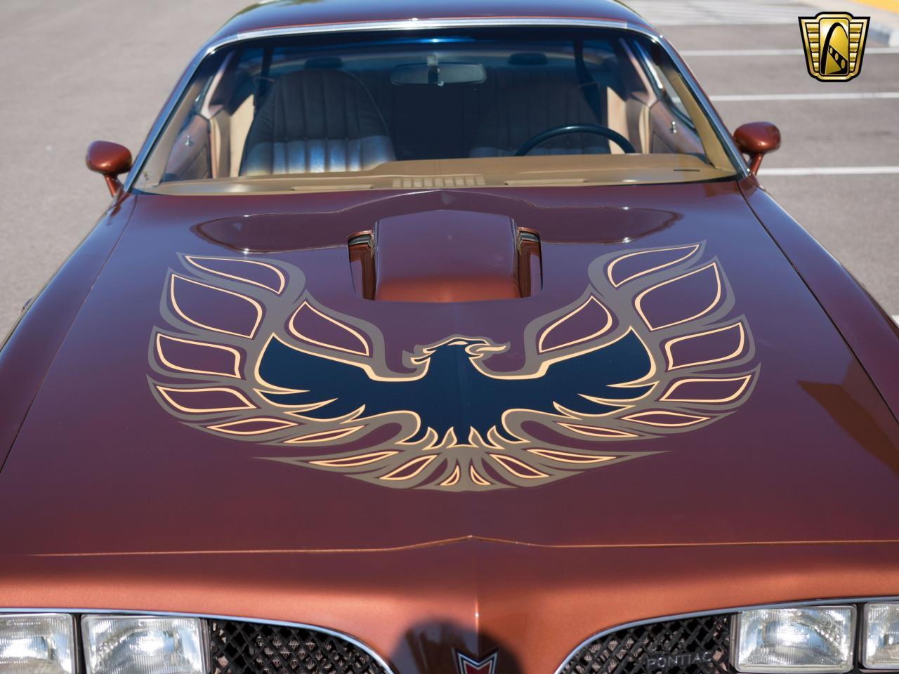 Large Picture of '78 Pontiac Firebird Trans Am - LBDU