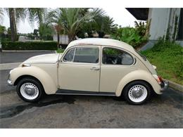 Picture of '71 Beetle - LBWK