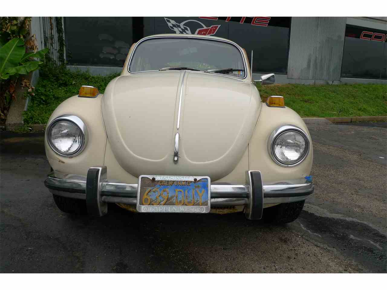 Large Picture of '71 Beetle - LBWK