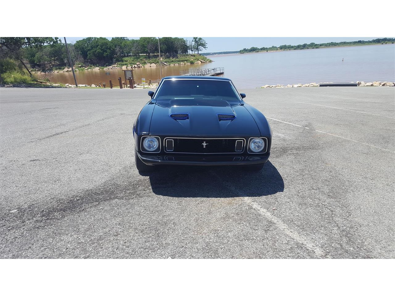 Large Picture of 1973 Ford Mustang Mach 1 - $45,000.00 Offered by a Private Seller - LBYV