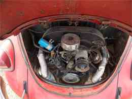 Picture of Classic '69 Beetle - $5,000.00 - LC46