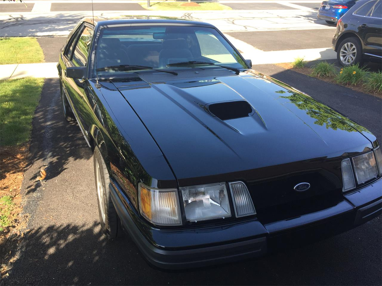 Large Picture of '86 Mustang SVO - L8BI