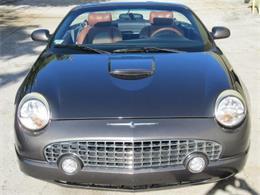 Picture of '03 Thunderbird - LCAT