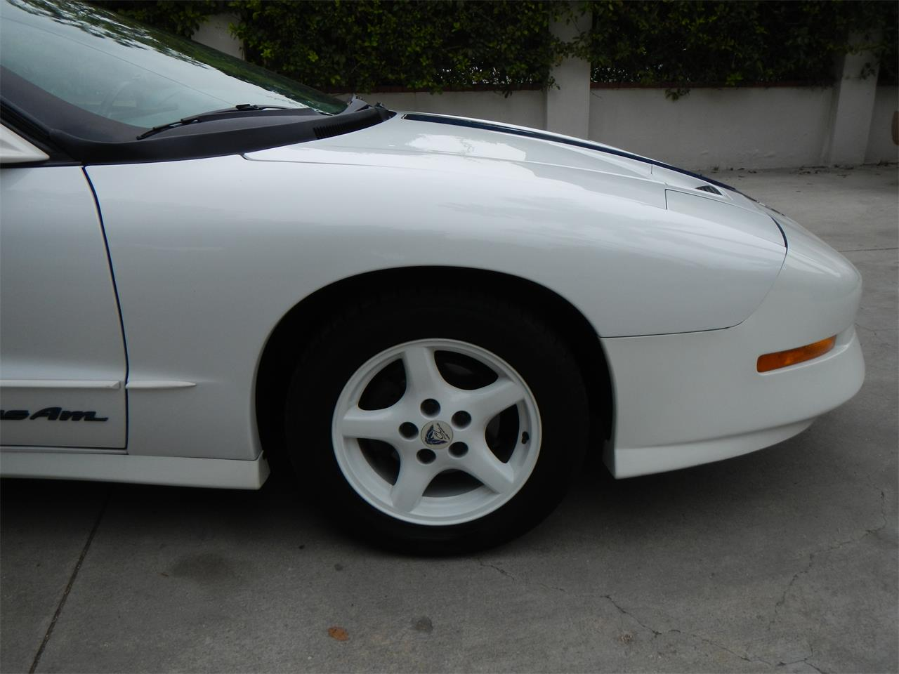 Large Picture of '94 Firebird Trans Am - L8BY